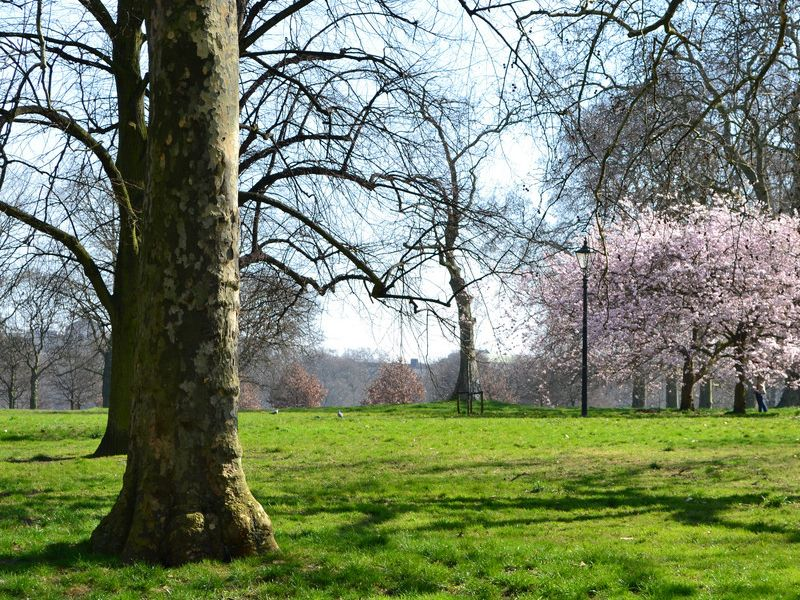 The Hyde Park