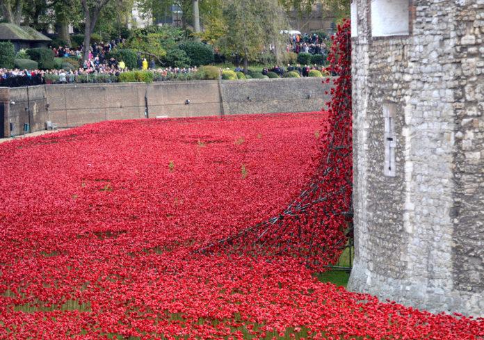 Blood Swept Lands Poppies Sculptures
